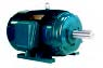 NEMA Premium Efficiency Inverter Duty Motors